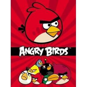Бизнес-блокнот А6 80 л. кл.  Angry Birds